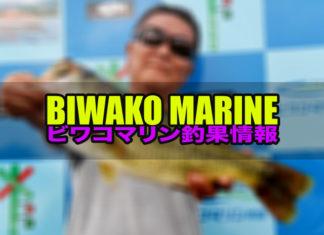 ビワコマリン :釣果情報
