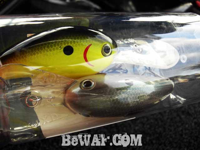 biwako-setagawa-bass-shousai-diary-7