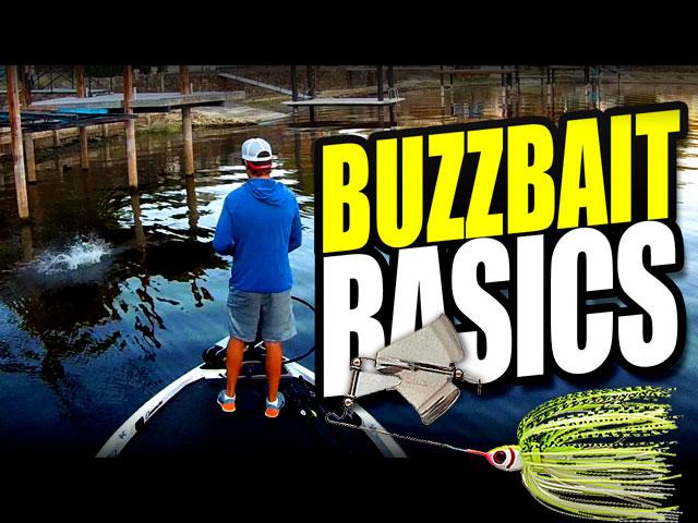 buzzbait-basics