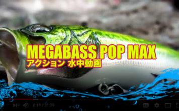 """Megabass - PopMax """"ポップマックス""""の水中映像 2"""