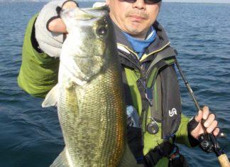 琵琶湖バスフィッシングガイドリポート ~大阪様~ 42cm