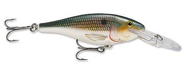 rapala-shad-rap-color-shousai-osusume-3