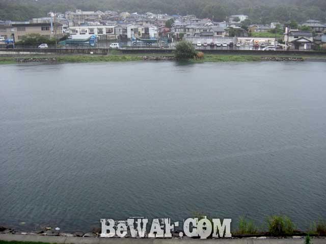 setagawa bass chouka bib bait shousai 1