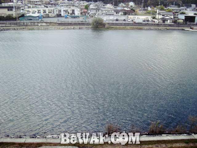 setagawa-bass-chouka-shousai2