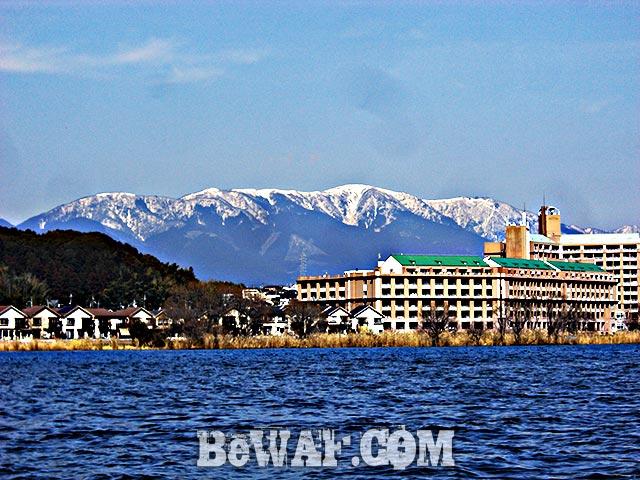 琵琶湖釣行 3月4日 釣果写真