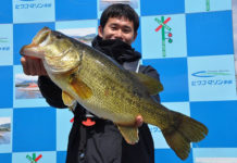 琵琶湖ロクマル写真