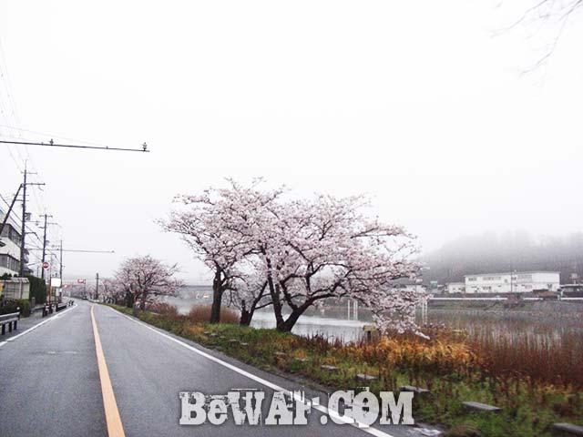 2017年4月9日 琵琶湖ガイド日記写真