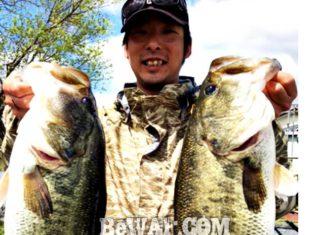 お客様からの釣果:大阪の佐々木様~ジグで56x54cm!! (2017年)