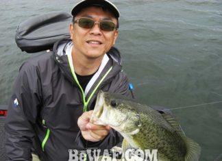 琵琶湖バスフィッシングガイドリポート ~小西様~ 46cm