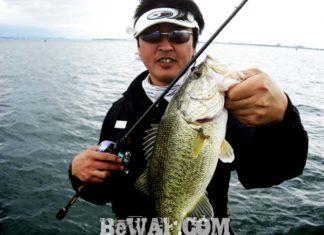 琵琶湖バスフィッシングガイドリポート ~大島様~ 45cm