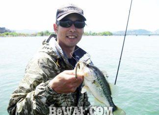 琵琶湖バスフィッシングガイドリポート ~佐々木様~ 33cm