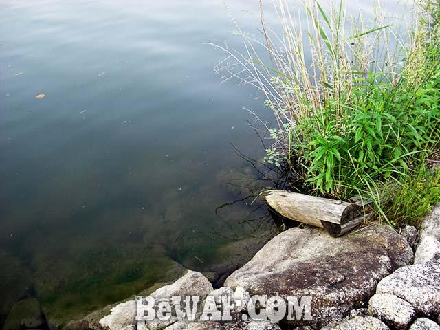 瀬田川 マキマキ琵琶湖 写真