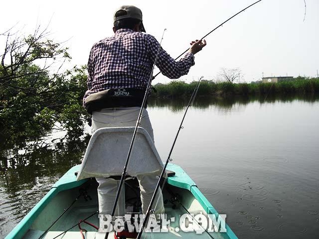 西の湖 バス釣り 釣果 2017年 写真