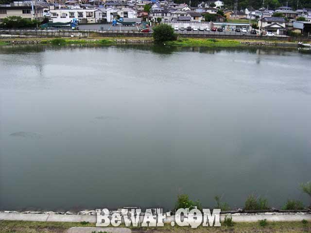 6月22日 瀬田川へ アタリがコツコツ 写真