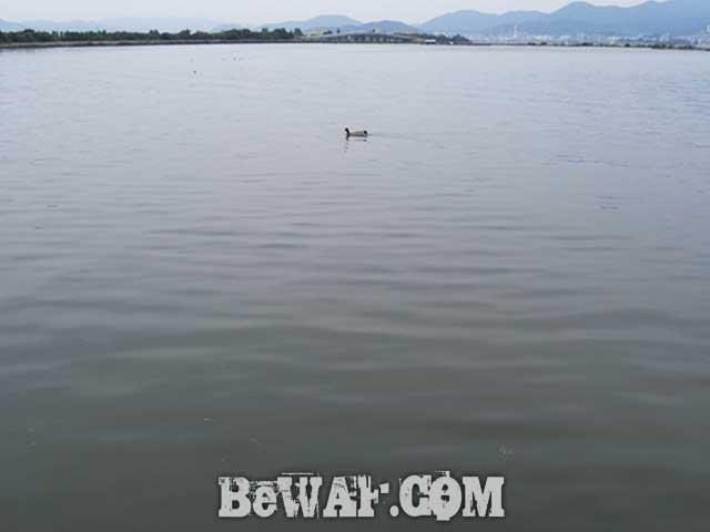 琵琶湖おかっぱりポイント 北山田紹介 写真