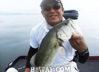 琵琶湖バスフィッシングガイドリポート ~小西様~ 47cm