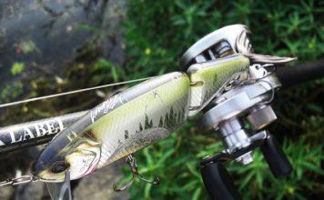 琵琶湖おかっぱり タイニークラッシュ釣果 写真