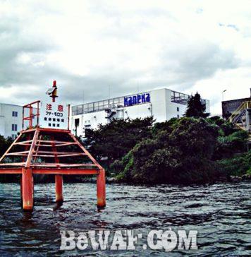 琵琶湖 パンチング湖上調査 写真