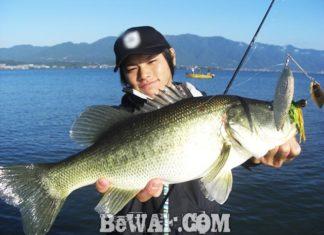 琵琶湖バスフィッシングガイドリポート ~阿部様~ 49cm