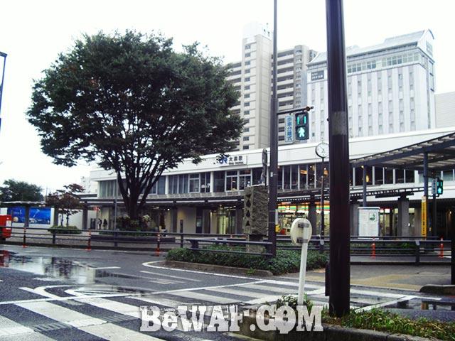 琵琶湖 秋のガイド 日記 北湖 ポイント紹介 ブログ 写真