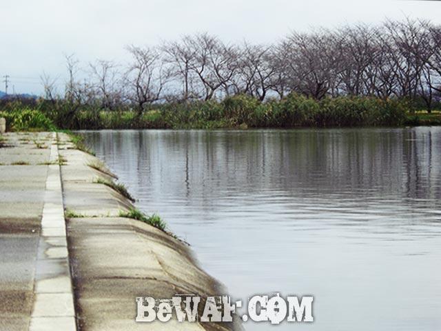 琵琶湖 平湖 おかっぱりへ 釣果 写真