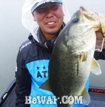 秋雨前線 スピナーベイト 攻略 琵琶湖ガイド日記 写真