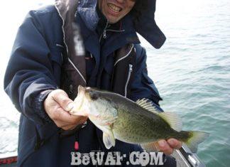 琵琶湖バスフィッシングガイドリポート ~上杉様~ 32cm
