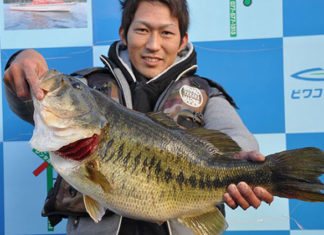 tweet釣果:メタルでボカン!! 63cm!! (琵琶湖)