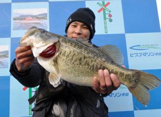 tweet釣果:またまたメタルでボカン!! 52cm!! (琵琶湖)