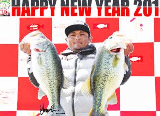 新年 明けましておめでとうございます。~祝 サイト開設4周年~