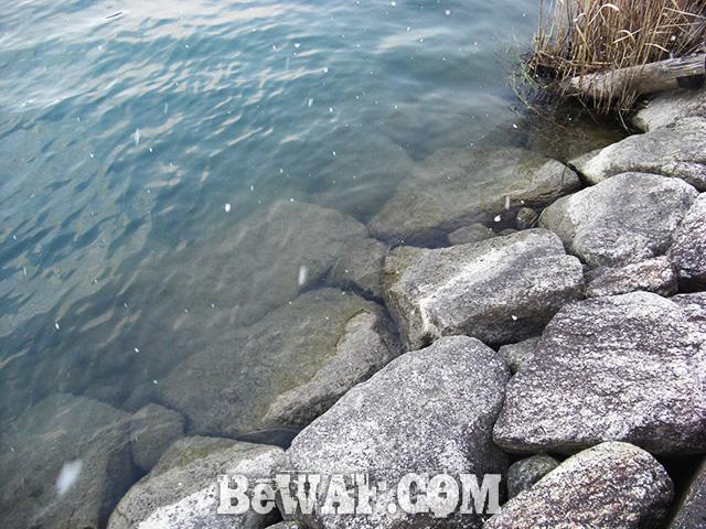 瀬田川 冬の釣り リールメンテナンス 写真