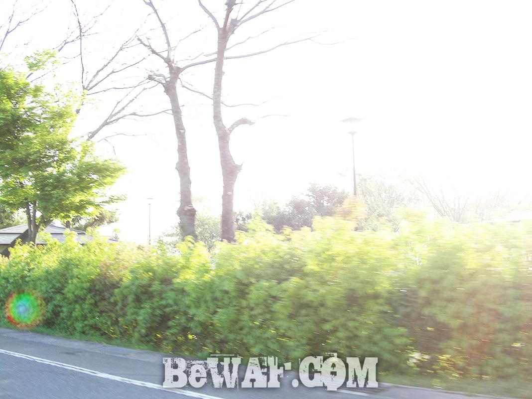 琵琶湖 木ノ浜浚渫 調査写真
