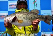 琵琶湖釣行 プリスポーンダイナマイト 58cm 写真
