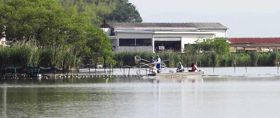 西の湖 チャプタープラクティス 写真