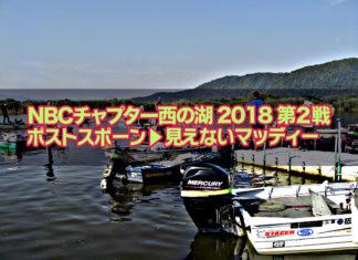 西の湖へ (2018年 6月3日) チャプター西の湖第2戦