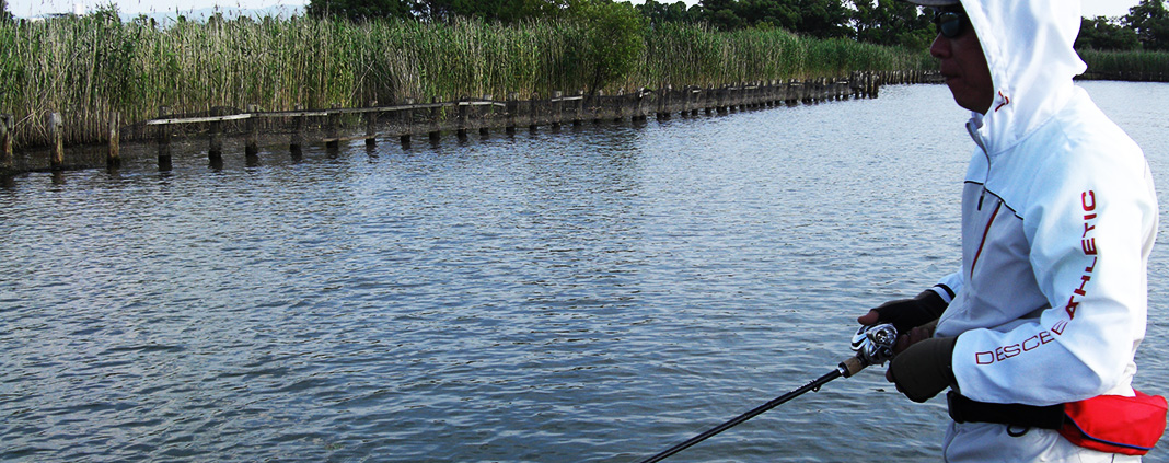 琵琶湖ガイド日記 6月25日 釣果写真