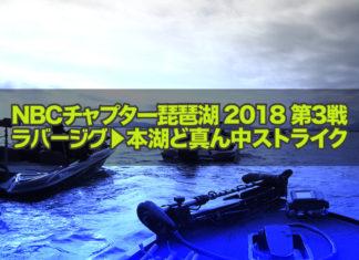 琵琶湖へ (2018年 6月17日) 本日はチャプター琵琶湖第3戦に参戦