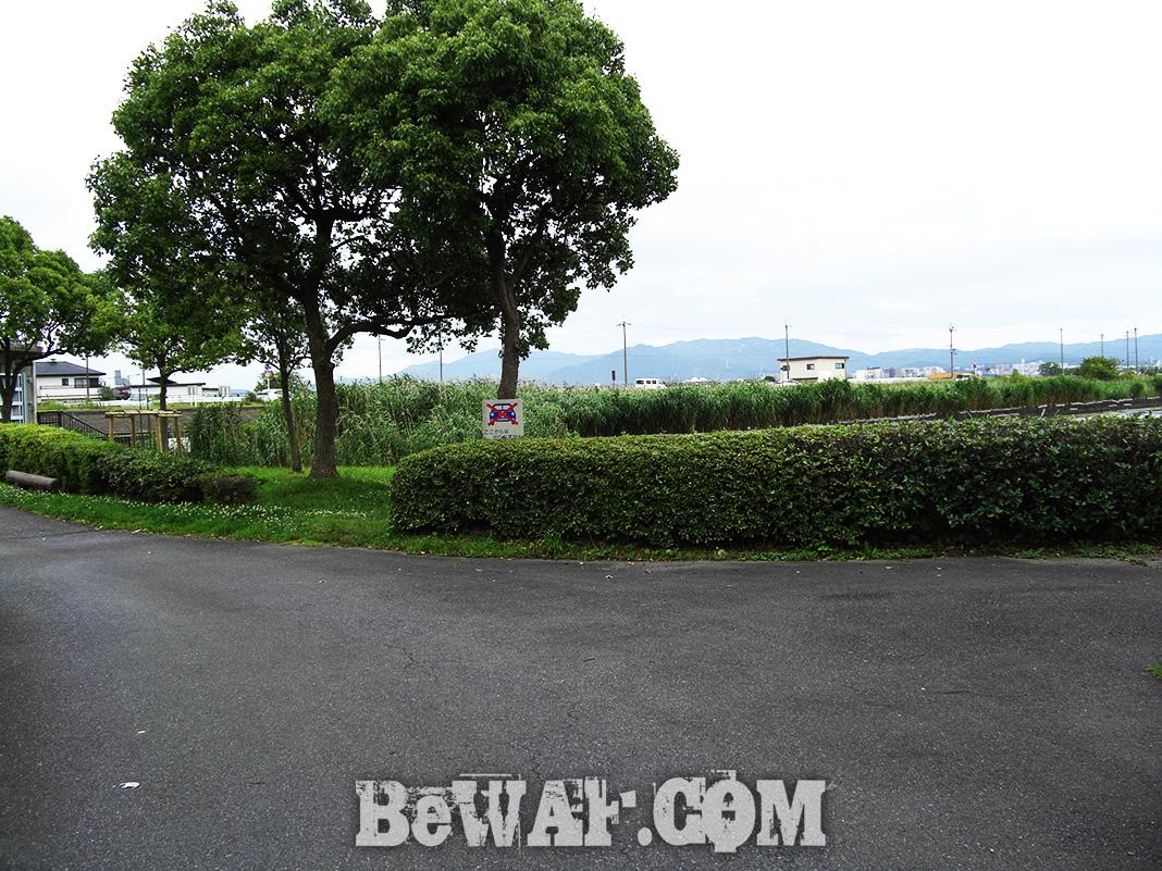 琵琶湖 北山田 おかっぱりリールテスト写真