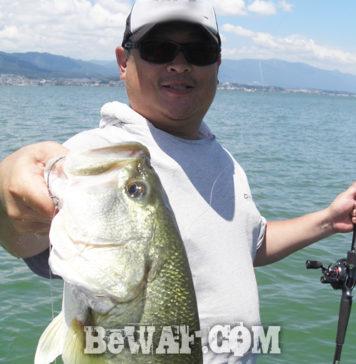 琵琶湖ガイドサービス 3年ぶりの50アップ写真