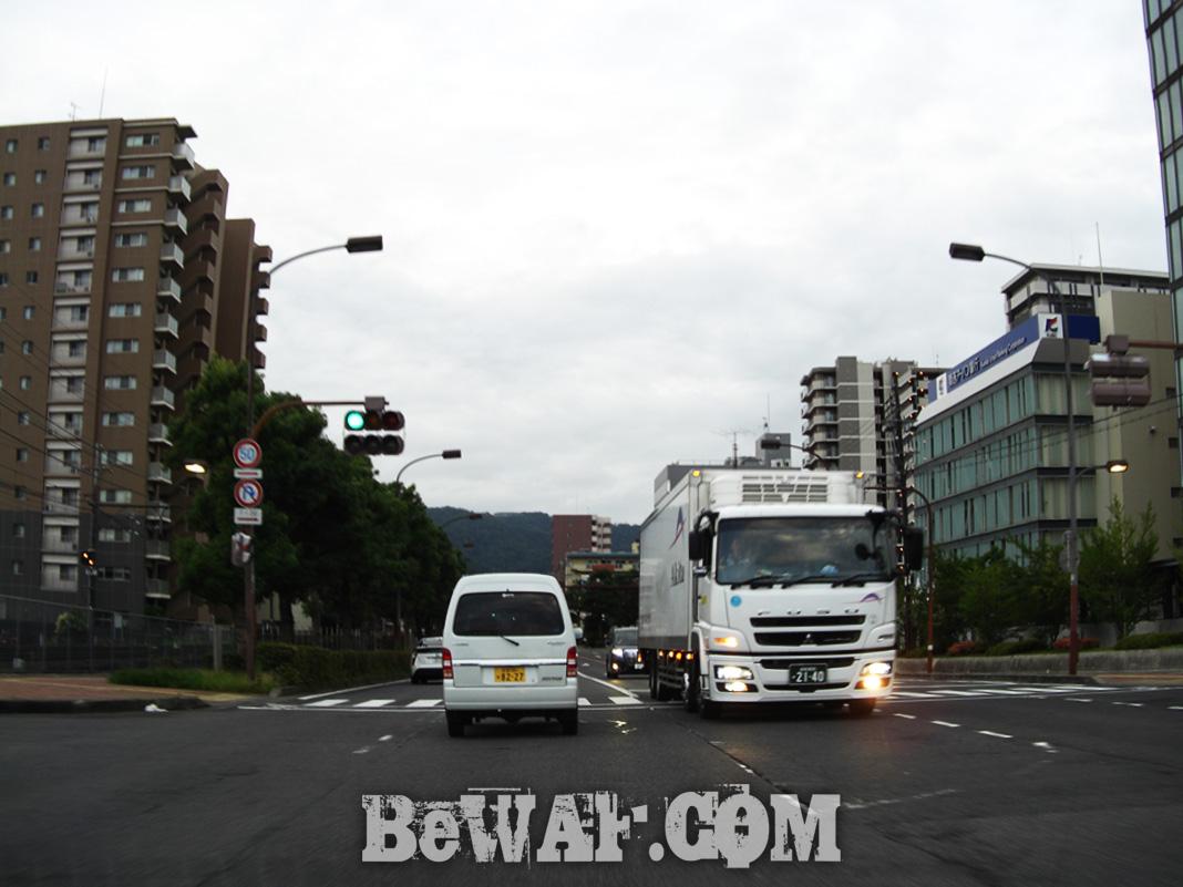 琵琶湖ガイド日記 6月30日 2018年 写真