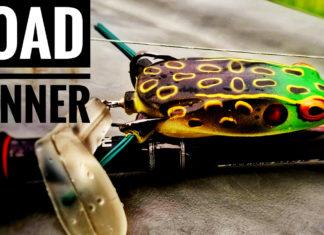 """水中映像:ブーヤー """"Toad Runner Frogs"""""""