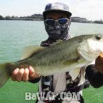 琵琶湖 夏のビックワーム釣果写真