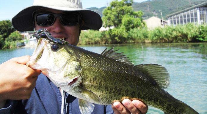琵琶湖湖上業務 釣れない日々 2018年 写真