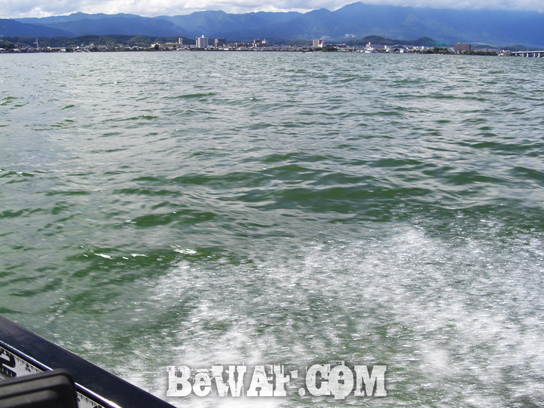 琵琶湖ボート釣行 瀬田川 8月11日 写真