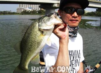 琵琶湖バスフィッシングガイドリポート ~里様~ 45cm