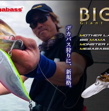 メガバス BIG-M 4.0 入荷写真
