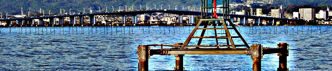 琵琶湖 秋のゲーリーバズ釣果 写真