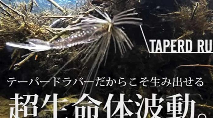 レイドジャパン エグダマ 入荷写真