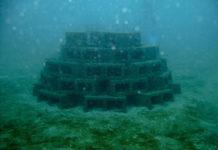 魚探とオダ漁礁について写真