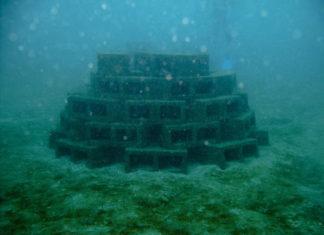 """魚探を進化させた理由 """"キテレツ人工漁礁"""":fish attractors"""
